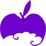 貴州紫蘋果裝飾工程有限公司安順分公司
