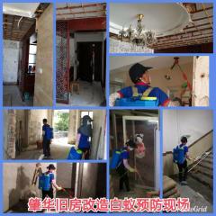 肇慶市肇華白蟻害蟲防治有限公司