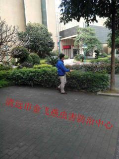 金飞燕虫害防治有限公司