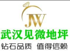 武汉见微宏盛装饰工程有限公司