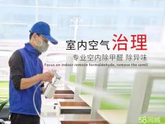 般竹环境科技