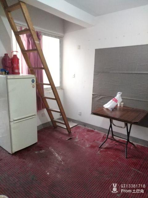 带阁楼的小户型,最重要的是结构和空间的合理利用。_1